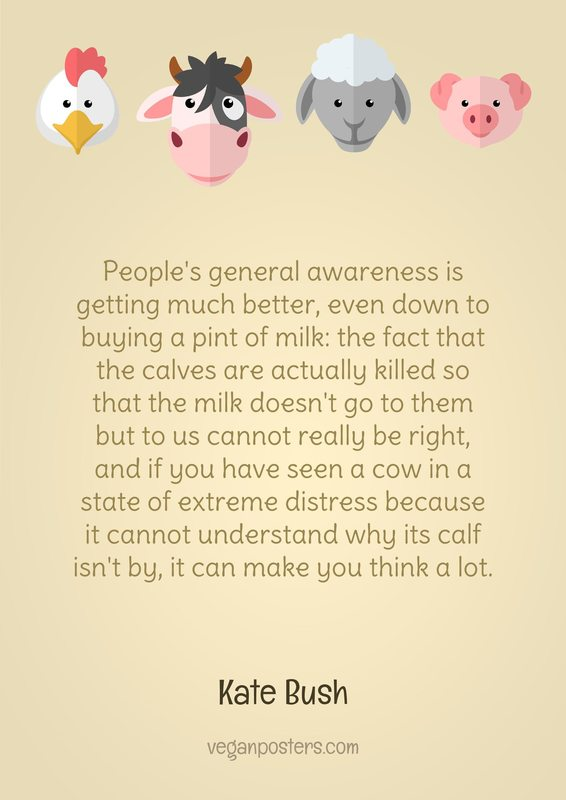 People's general awareness is getting much better, even down to buying a pint of milk: the fact that the calves are actually killed so that the milk doesn't go to them but to us cannot really be right, and if you have seen a cow in a state of extreme distress because it cannot understand why its calf isn't by, it can make you think a lot.