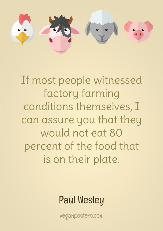 If most people witnessed factory farming conditions themselves, I can assure you that they would not eat 80 percent of the food that is on their plate.