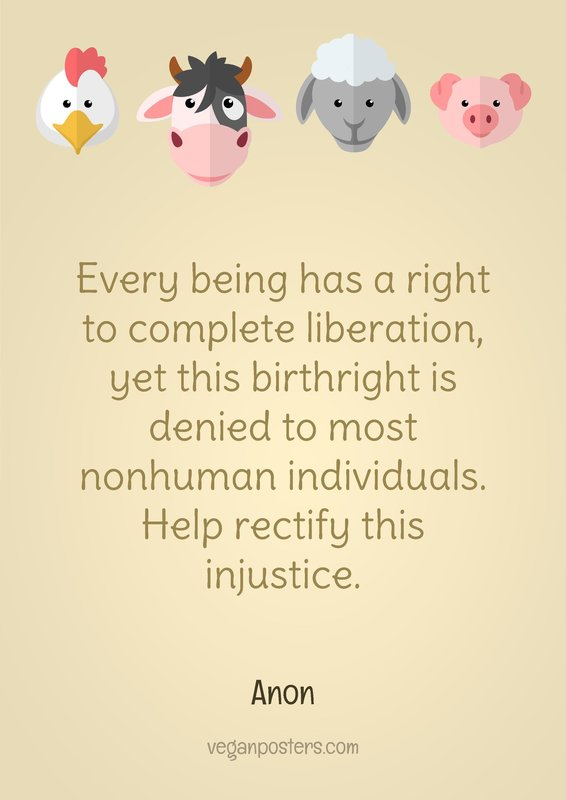 Every being has a right to complete liberation, yet this birthright is denied to most nonhuman individuals. Help rectify this injustice.