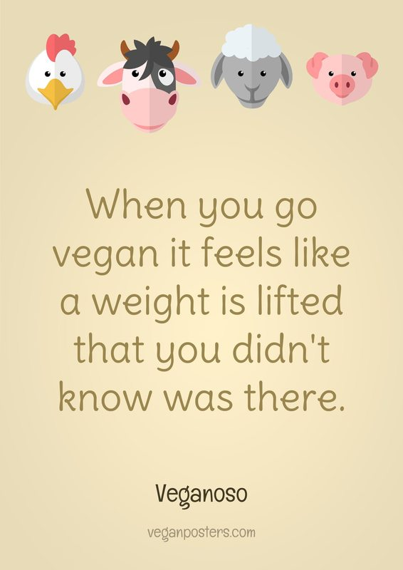 When you go vegan it feels like a weight is lifted that you didn't know was there.