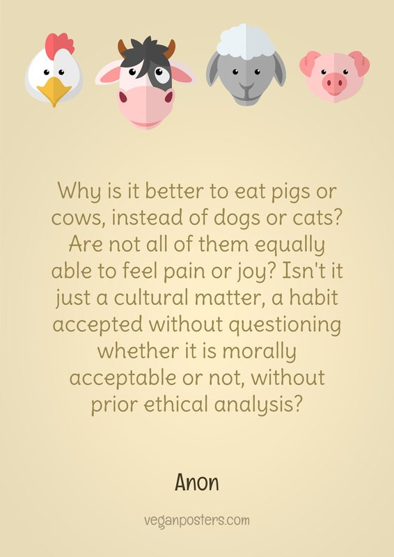 Why is it better to eat pigs or cows, instead of dogs or cats? Are not all of them equally able to feel pain or joy? Isn't it just a cultural matter, a habit accepted without questioning whether it is morally acceptable or not, without prior ethical analysis?