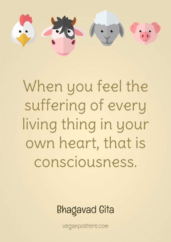 When you feel the suffering of every living thing in your own heart, that is consciousness.