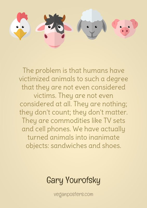 The problem is that humans have victimized animals to such a degree that they are not even considered victims. They are not even considered at all. They are nothing; they don't count; they don't matter. They are commodities like TV sets and cell phones. We have actually turned animals into inanimate objects: sandwiches and shoes.
