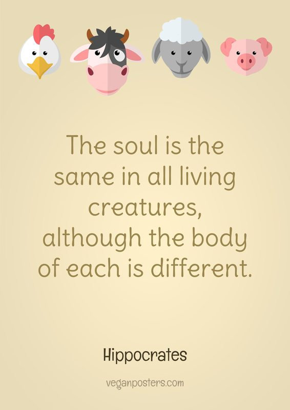 The soul is the same in all living creatures, although the body of each is different.