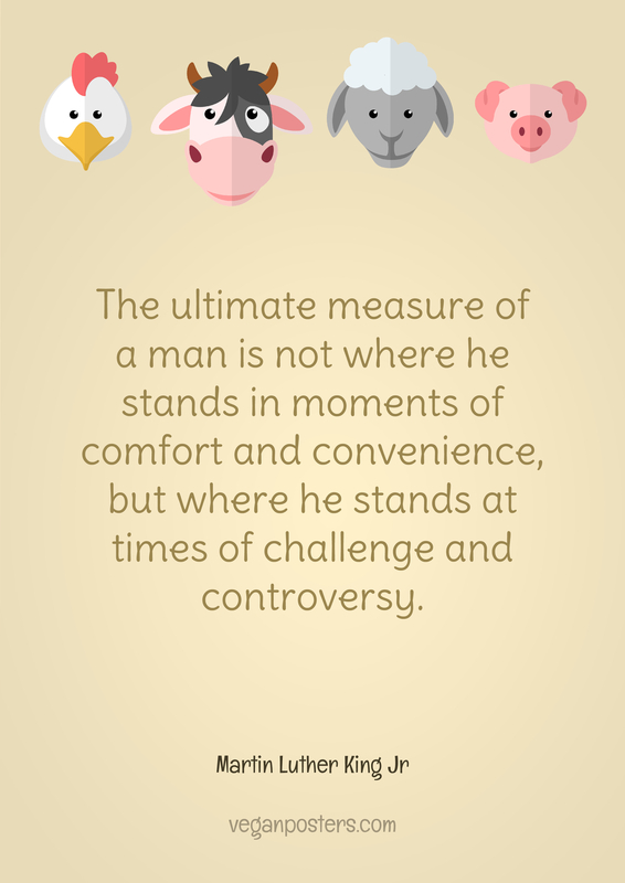 The ultimate measure of a man is not where he stands in moments of comfort and convenience, but where he stands at times of challenge and controversy.