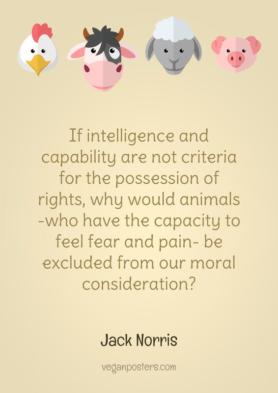 If intelligence and capability are not criteria for the possession of rights, why would animals -who have the capacity to feel fear and pain- be excluded from our moral consideration?