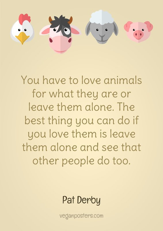 You have to love animals for what they are or leave them alone. The best thing you can do if you love them is leave them alone and see that other people do too.