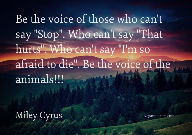 "Be the voice of those who can't say ""Stop"". Who can't say ""That hurts"". Who can't say ""I'm so afraid to die"". Be the voice of the animals!!!"