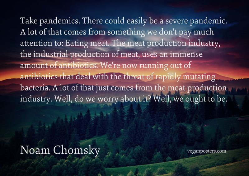 Take pandemics. There could easily be a severe pandemic. A lot of that comes from something we don't pay much attention to: Eating meat. The meat production industry, the industrial production of meat, uses an immense amount of antibiotics. We're now running out of antibiotics that deal with the threat of rapidly mutating bacteria. A lot of that just comes from the meat production industry. Well, do we worry about it? Well, we ought to be.