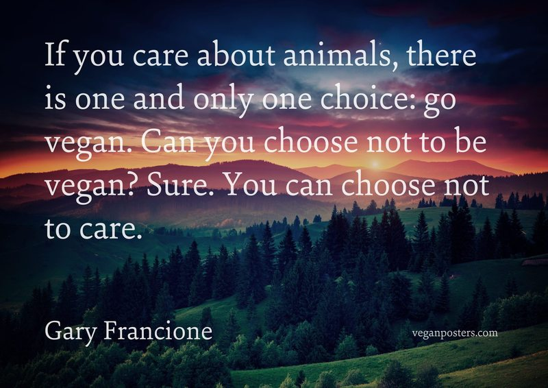 If you care about animals, there is one and only one choice: go vegan. Can you choose not to be vegan? Sure. You can choose not to care.