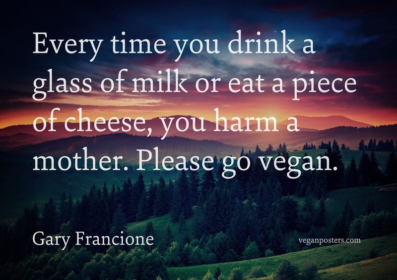Every time you drink a glass of milk or eat a piece of cheese, you harm a mother. Please go vegan.