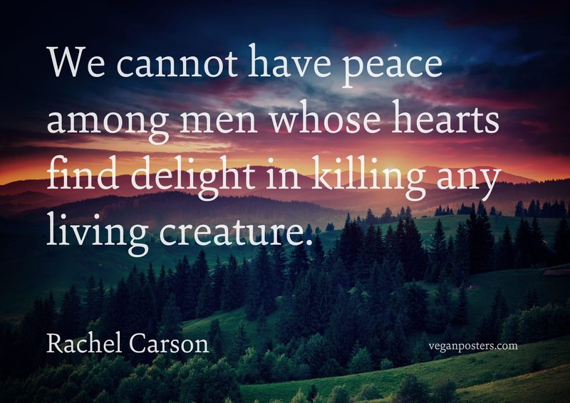We cannot have peace among men whose hearts find delight in killing any living creature.