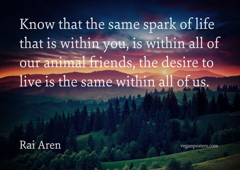 Know that the same spark of life that is within you, is within all of our animal friends, the desire to live is the same within all of us.