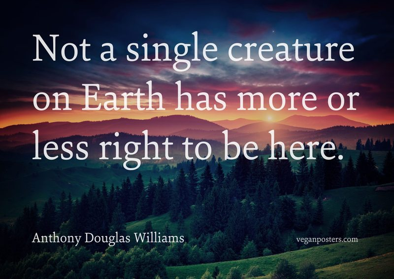 Not a single creature on Earth has more or less right to be here.
