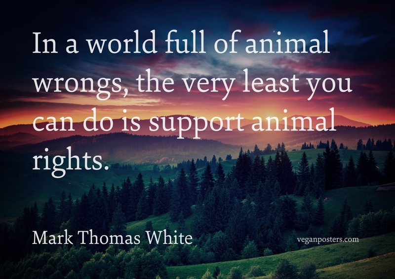 In a world full of animal wrongs, the very least you can do is support animal rights.