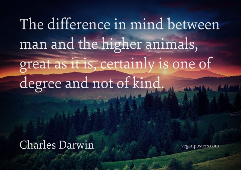 The difference in mind between man and the higher animals, great as it is, certainly is one of degree and not of kind.