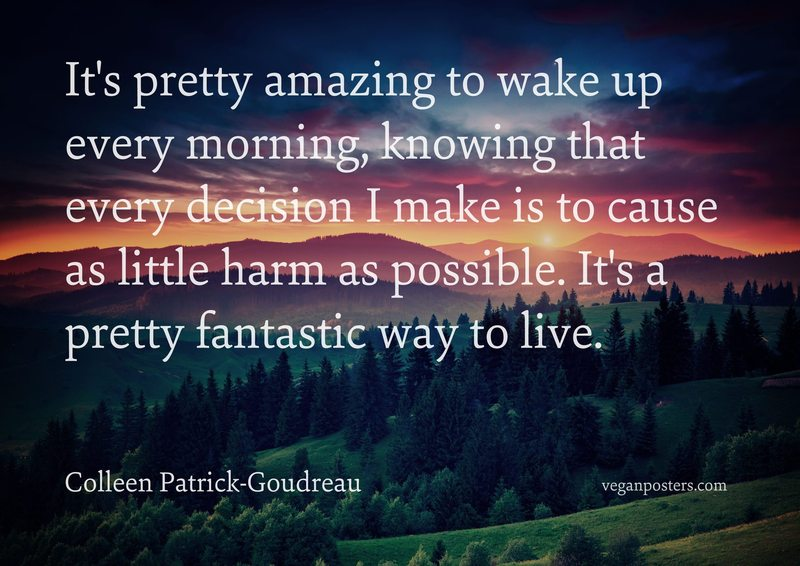 It's pretty amazing to wake up every morning, knowing that every decision I make is to cause as little harm as possible. It's a pretty fantastic way to live.