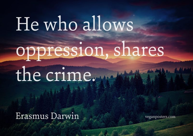 He who allows oppression, shares the crime.