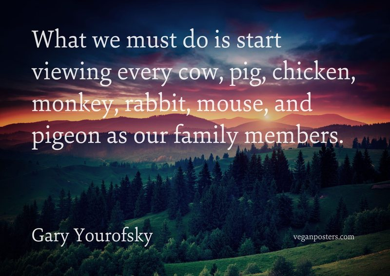 What we must do is start viewing every cow, pig, chicken, monkey, rabbit, mouse, and pigeon as our family members.