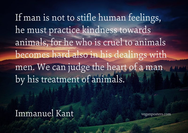 If man is not to stifle human feelings, he must practice kindness towards animals, for he who is cruel to animals becomes hard also in his dealings with men. We can judge the heart of a man by his treatment of animals.