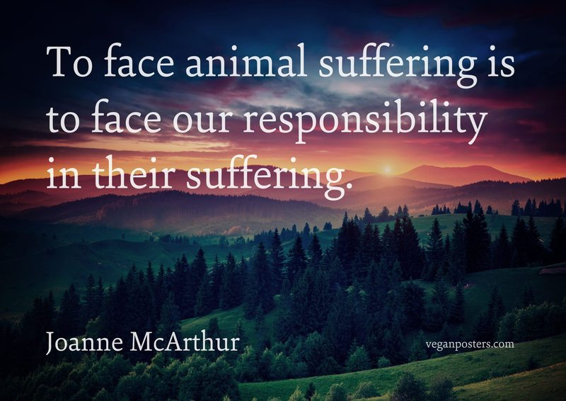 To face animal suffering is to face our responsibility in their suffering.
