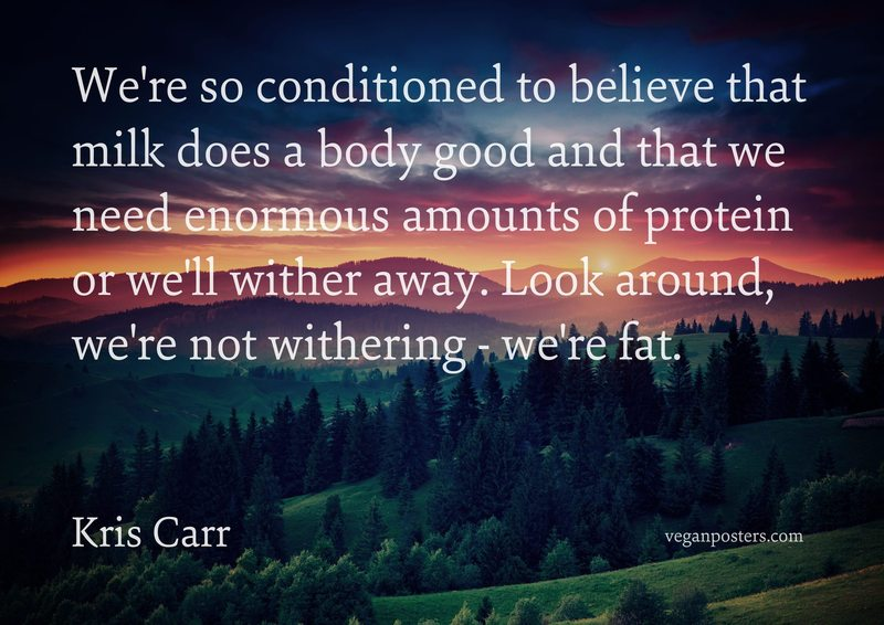 We're so conditioned to believe that milk does a body good and that we need enormous amounts of protein or we'll wither away. Look around, we're not withering - we're fat.