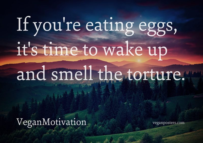 If you're eating eggs, it's time to wake up and smell the torture.