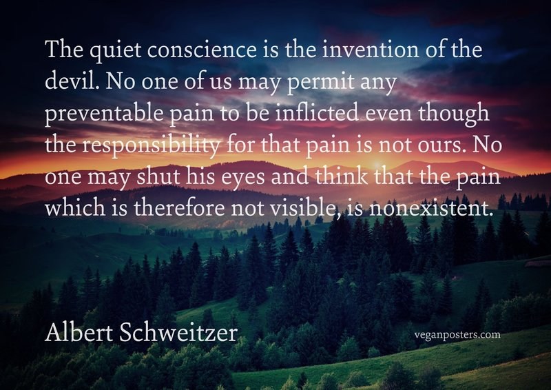 The quiet conscience is the invention of the devil. No one of us may permit any preventable pain to be inflicted even though the responsibility for that pain is not ours. No one may shut his eyes and think that the pain which is therefore not visible, is nonexistent.