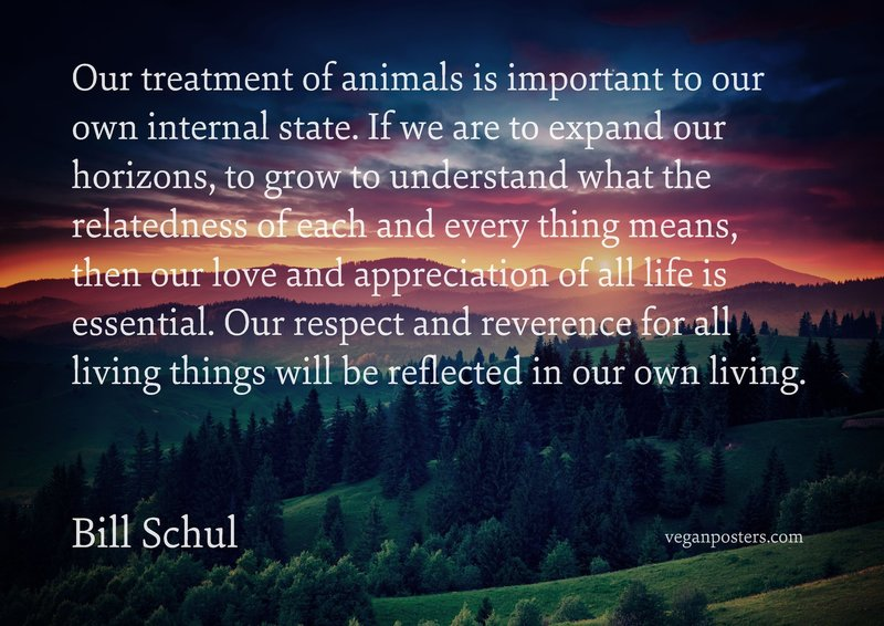 Our treatment of animals is important to our own internal state. If we are to expand our horizons, to grow to understand what the relatedness of each and every thing means, then our love and appreciation of all life is essential. Our respect and reverence for all living things will be reflected in our own living.