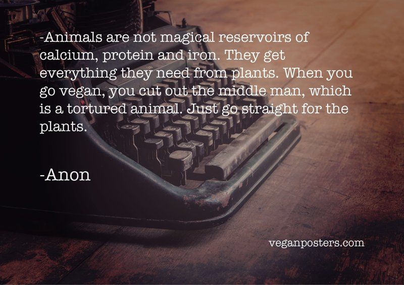 Animals are not magical reservoirs of calcium, protein and iron. They get everything they need from plants. When you go vegan, you cut out the middle man, which is a tortured animal. Just go straight for the plants.