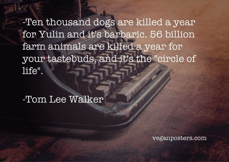 "Ten thousand dogs are killed a year for Yulin and it's barbaric. 56 billion farm animals are killed a year for your tastebuds, and it's the ""circle of life""."