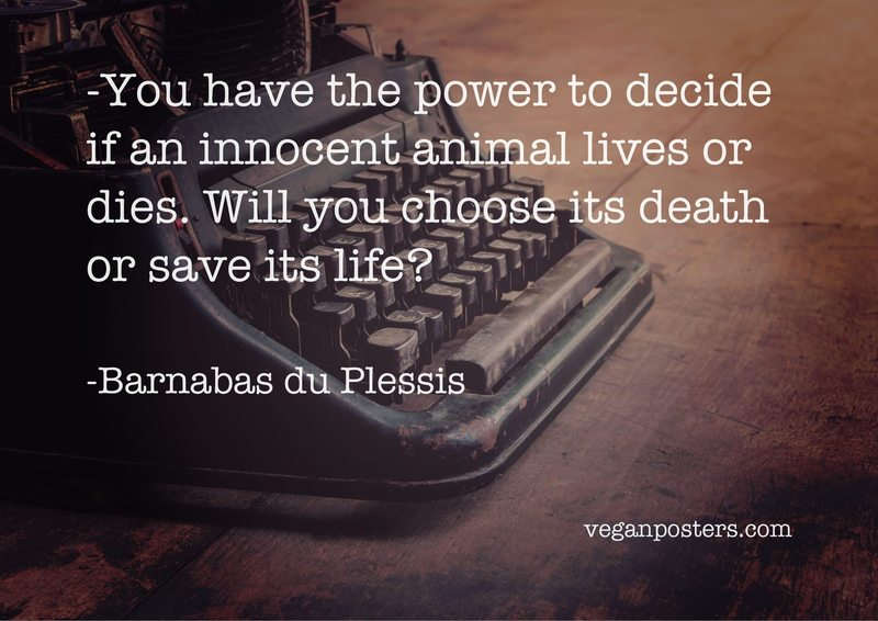 You have the power to decide if an innocent animal lives or dies. Will you choose its death or save its life?