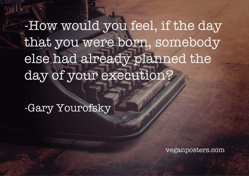 How would you feel, if the day that you were born, somebody else had already planned the day of your execution?