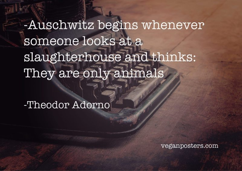 Auschwitz begins whenever someone looks at a slaughterhouse and thinks: They are only animals