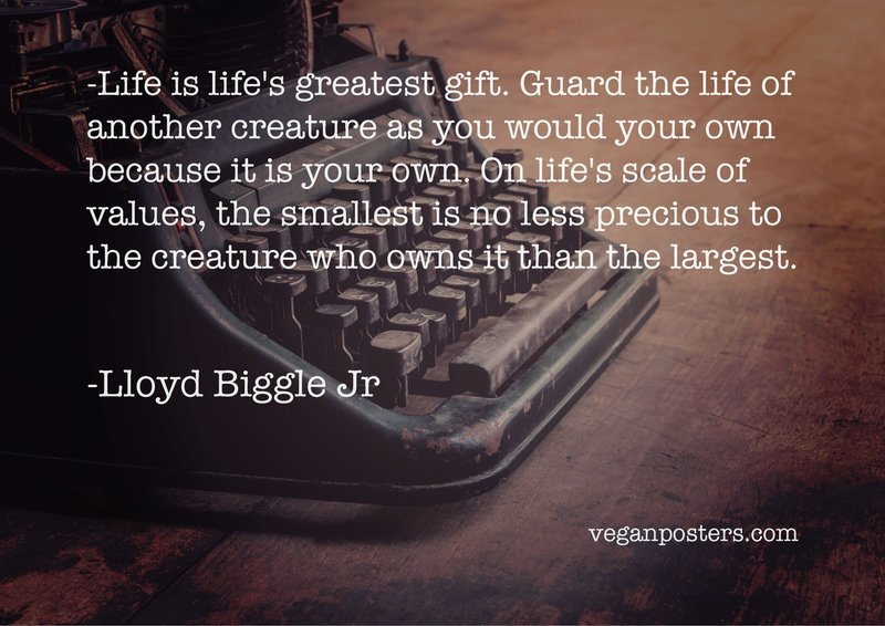 Life is life's greatest gift. Guard the life of another creature as you would your own because it is your own. On life's scale of values, the smallest is no less precious to the creature who owns it than the largest.