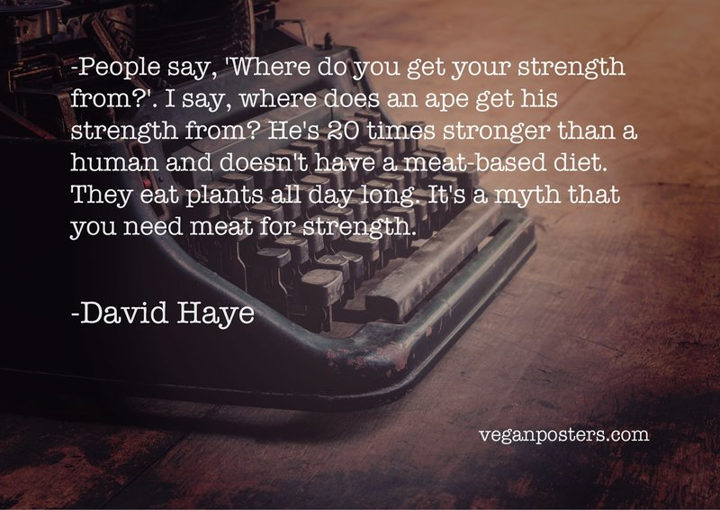 People say, 'Where do you get your strength from?'. I say, where does an ape get his strength from? He's 20 times stronger than a human and doesn't have a meat-based diet. They eat plants all day long. It's a myth that you need meat for strength.