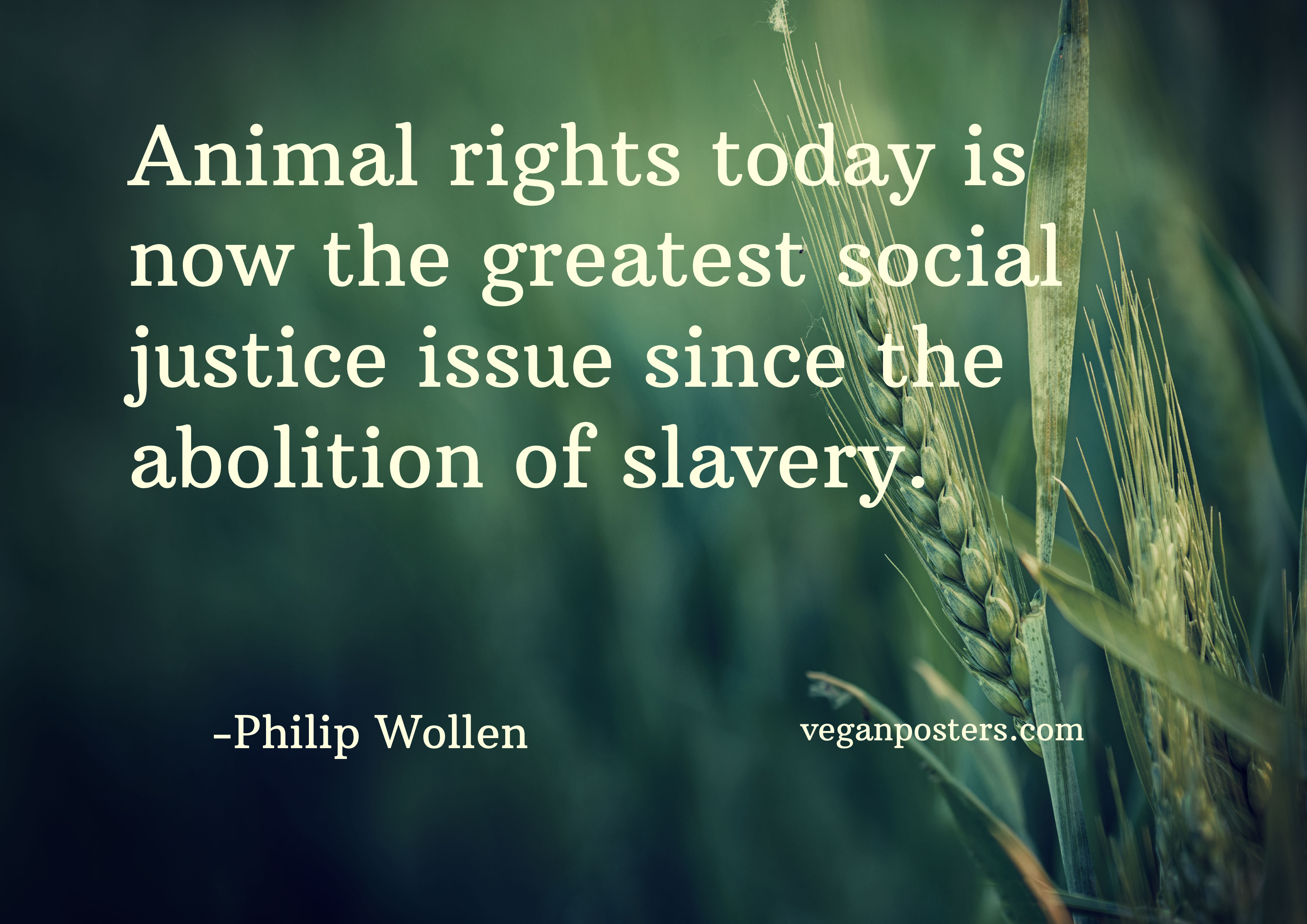 animal rights today is now the greatest social justice issue