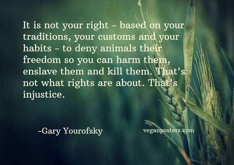 It is not your right — based on your traditions, your customs and your habits — to deny animals their freedom so you can harm them, enslave them and kill them. That's not what rights are about. That's injustice.