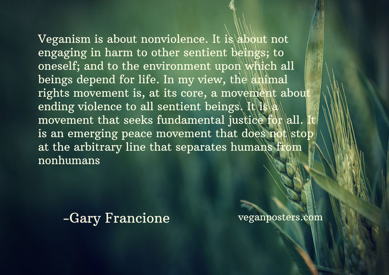 Veganism is about nonviolence. It is about not engaging in harm to other sentient beings; to oneself; and to the environment upon which all beings depend for life. In my view, the animal rights movement is, at its core, a movement about ending violence to all sentient beings. It is a movement that seeks fundamental justice for all. It is an emerging peace movement that does not stop at the arbitrary line that separates humans from nonhumans