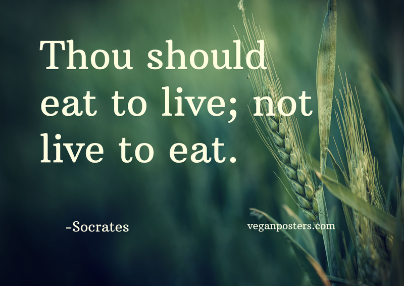 Thou should eat to live; not live to eat.