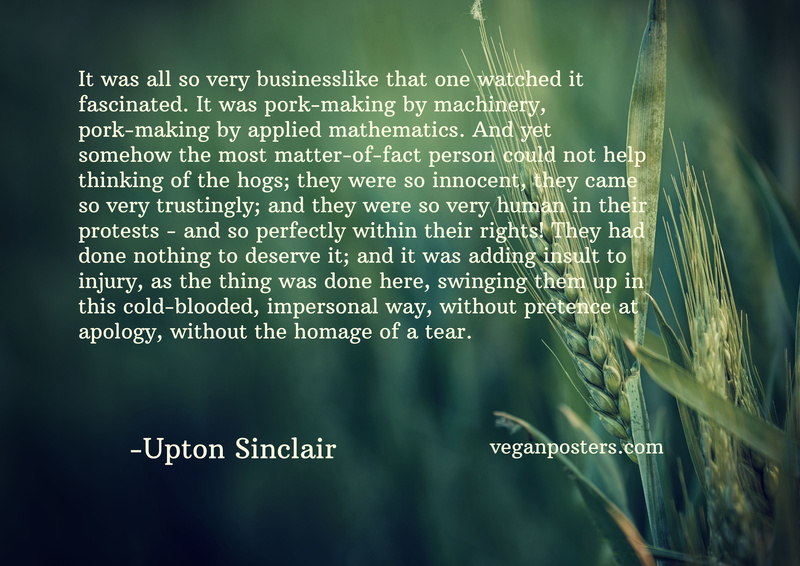 It was all so very businesslike that one watched it fascinated. It was pork-making by machinery, pork-making by applied mathematics. And yet somehow the most matter-of-fact person could not help thinking of the hogs; they were so innocent, they came so very trustingly; and they were so very human in their protests - and so perfectly within their rights! They had done nothing to deserve it; and it was adding insult to injury, as the thing was done here, swinging them up in this cold-blooded, impersonal way, without pretence at apology, without the homage of a tear.