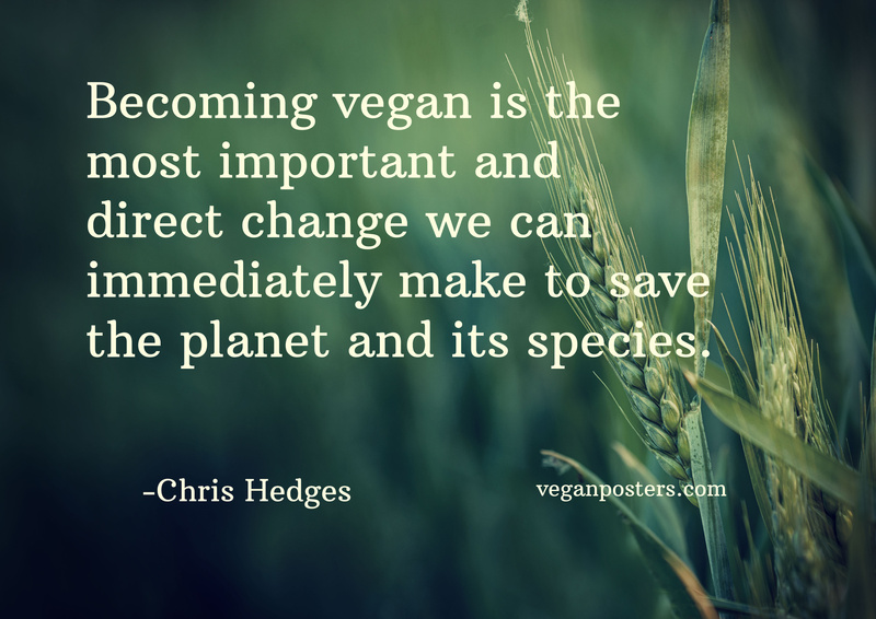 Becoming vegan is the most important and direct change we can immediately make to save the planet and its species.