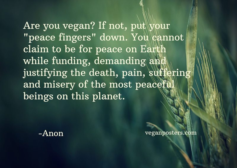 "Are you vegan? If not, put your ""peace fingers"" down. You cannot claim to be for peace on Earth while funding, demanding and justifying the death, pain, suffering and misery of the most peaceful beings on this planet."