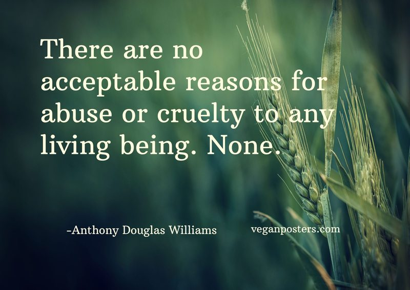 There are no acceptable reasons for abuse or cruelty to any living being. None.
