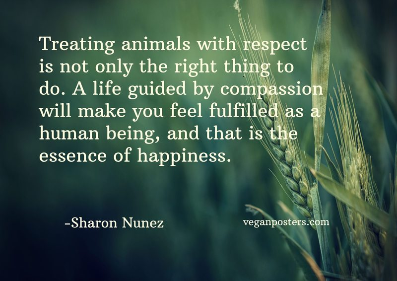 treating animals with respect is not only the right thing