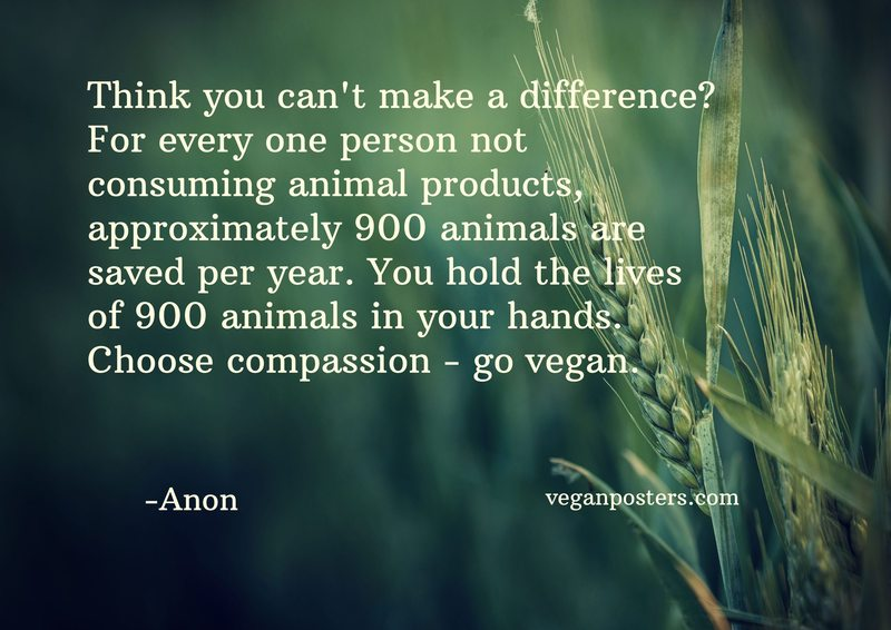 Think you can't make a difference? For every one person not consuming animal products, approximately 900 animals are saved per year. You hold the lives of 900 animals in your hands. Choose compassion - go vegan.