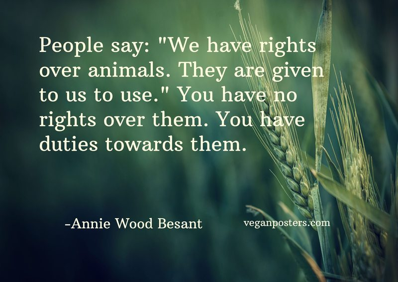 """People say: """"We have rights over animals. They are given to us to use."""" You have no rights over them. You have duties towards them."""