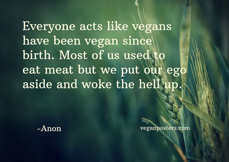 Everyone acts like vegans have been vegan since birth. Most of us use to eat meat but we put our ego aside and woke the hell up.