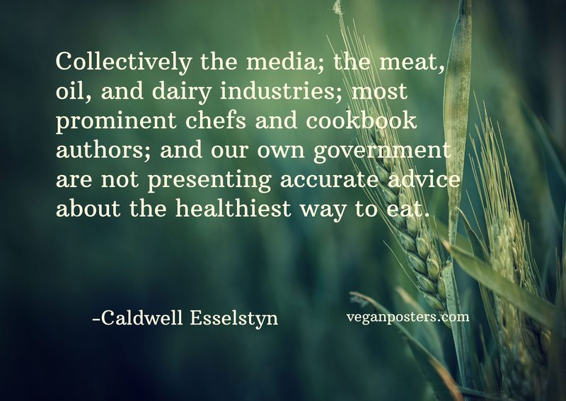 Collectively the media; the meat, oil, and dairy industries; most prominent chefs and cookbook authors; and our own government are not presenting accurate advice about the healthiest way to eat.