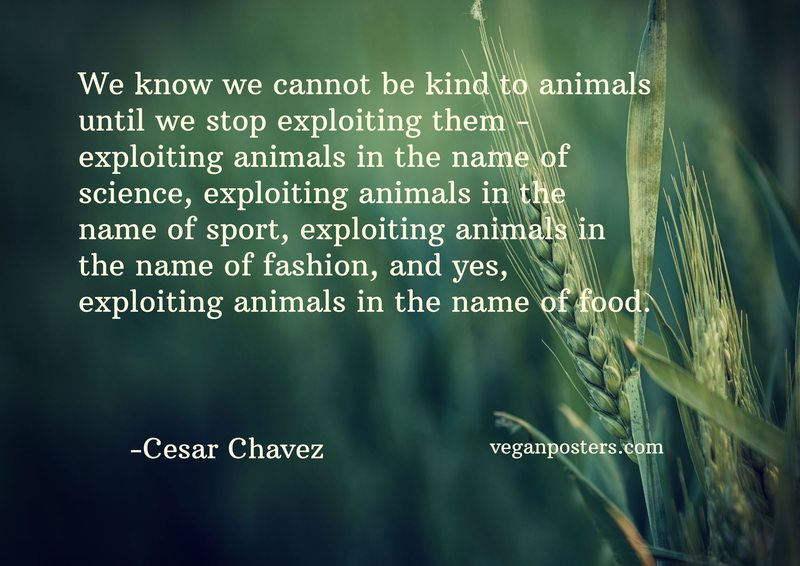 We know we cannot be kind to animals until we stop exploiting them - exploiting animals in the name of science, exploiting animals in the name of sport, exploiting animals in the name of fashion, and yes, exploiting animals in the name of food.